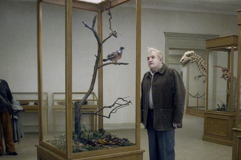 SommerOpenairKino - Nordlichter: Eine Taube sitzt auf einem Zweig...